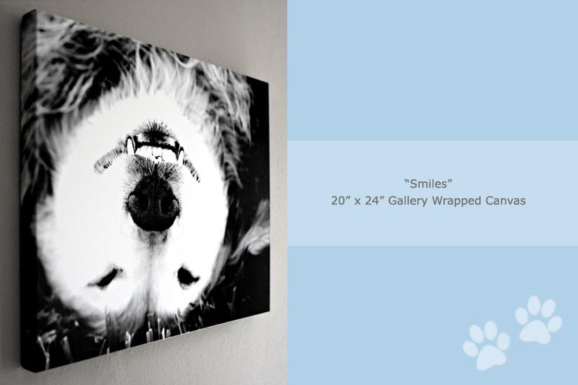 smiles-gallery-wrap