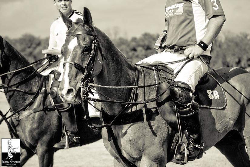 Polo Photography