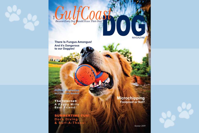 GulfCoastDOG Cover!