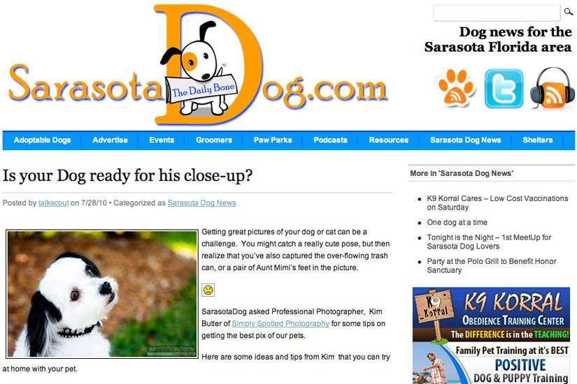 Sarasota Dog